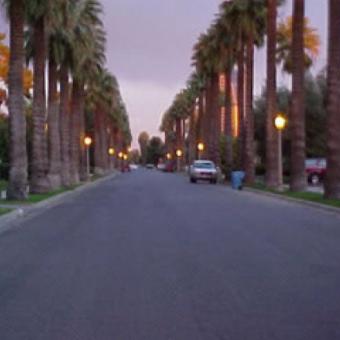Encanto-Palmcroft-neighborhood